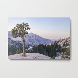Half Dome - Olmsted Point Metal Print