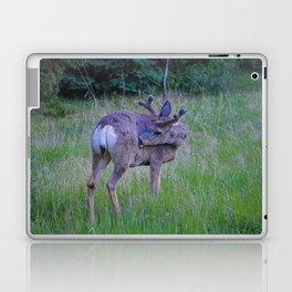 Mule Deer scratching an itch in Jasper National Park Laptop & iPad Skin