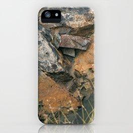 Lost Treasures iPhone Case