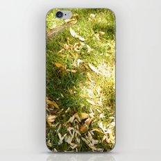 Grass & Sun  iPhone & iPod Skin