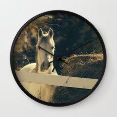 Autumn Mare Wall Clock