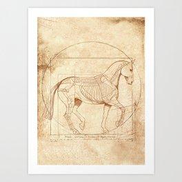 Da Vinci Horse In Piaffe Art Print