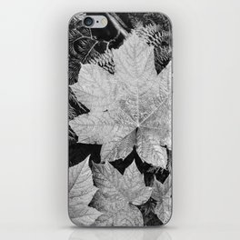 Ansel Adams - Leaves iPhone Skin
