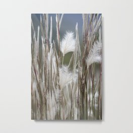 Feathery Field Metal Print