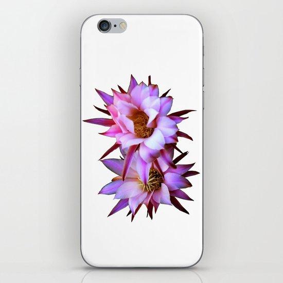 Purple cactus blossom iPhone & iPod Skin