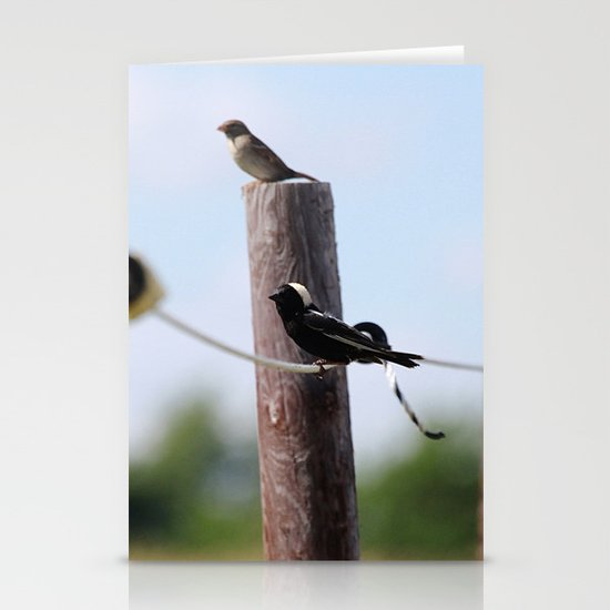 Bobolinks Stationery Cards