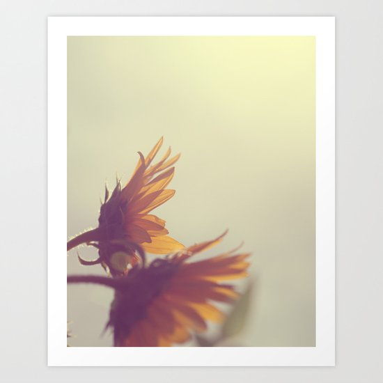 Sunflowers in the Sun Art Print