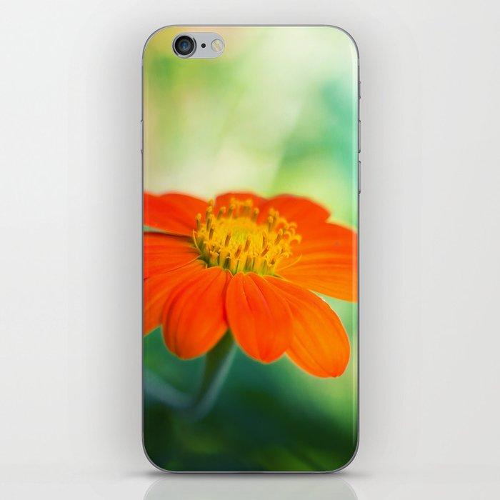 Dear Spring iPhone Skin
