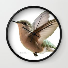 A little hummingbird love Wall Clock