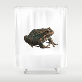 Frog 6 Shower Curtain