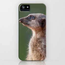 Meerkat Centurion iPhone Case