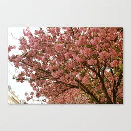 PARIS IN MARCH Canvas Print