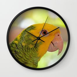 Amazon Wall Clock