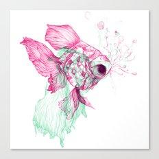 Pisces Baby Canvas Print