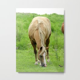 A Horse is a Horse of Course of Course Metal Print