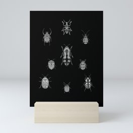 Beautiful Bugs Black Mini Art Print