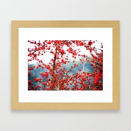 Hawthorn Tree Framed Art Print