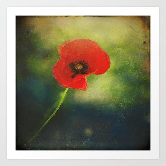 I found a Poppy Art Print