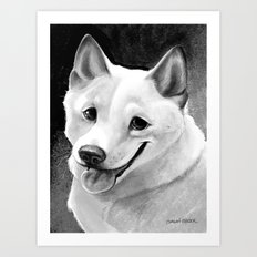 Shiba-Inu  Art Print