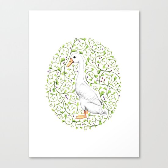 Duck Canvas Print