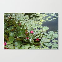 lotus flower Canvas Prints featuring Lotus by Melissa Schantz Photography