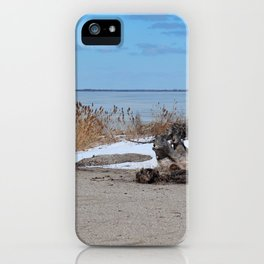 Maumee Bay in Winter III iPhone Case