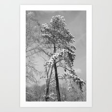 A Snowy Day Art Print