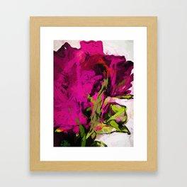 Rose Romantica Magenta Pink Framed Art Print
