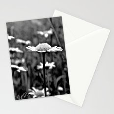 She's a Daisy Stationery Cards
