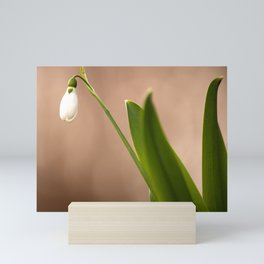 Spring Flower Snowdrop #decor #society6 Mini Art Print