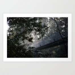 In To The Mist Art Print