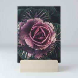 Pink Rosette Mini Art Print