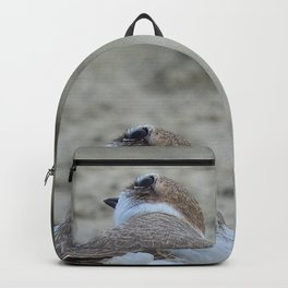 Snowy Plover Scan Backpack