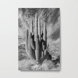 Centennial Metal Print