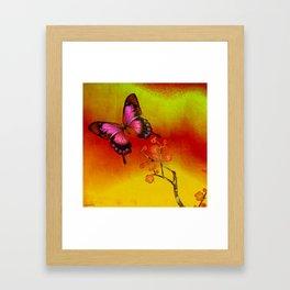 le papillon Japonais  Framed Art Print