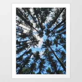 Remember to Look Up Art Print