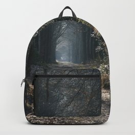 Mystical path Backpack