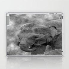 Hi Way Calf  Laptop & iPad Skin