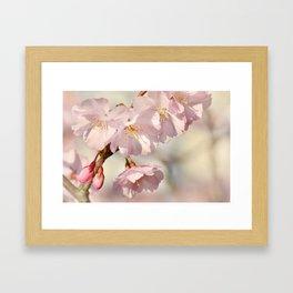Spring 0194 Framed Art Print