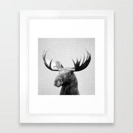 Moose - Black & White Framed Art Print