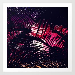 Tropical Purple and Red Sunset Palm Fronds Art Print