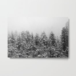 Black and White Snowy Pine trees Metal Print