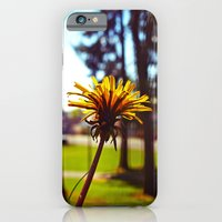 Spring dandelion Slim Case iPhone 6s