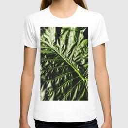 Rib And Veins T-shirt