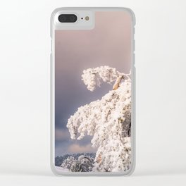 Frost Covered Pine Clear iPhone Case