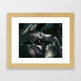 Cubs Framed Art Print