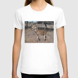 White Tail Deer  T-shirt