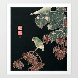Parakeet by Ito Jakuchu, 1900 Art Print
