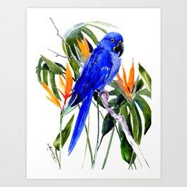 Hyacinth Macaw, Tropical colors foliage, jungle paradise flowers blue orange jungle colors Art Print