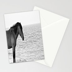 Assateague Pony Stationery Cards